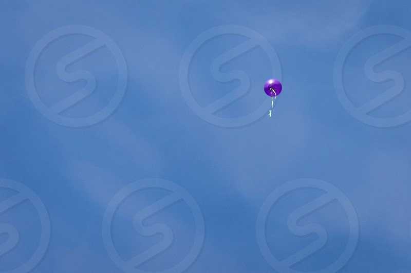 One Purple Balloon in the sky photo