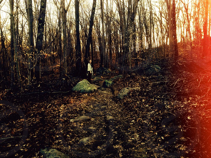 Lost in the winter NJ woods photo