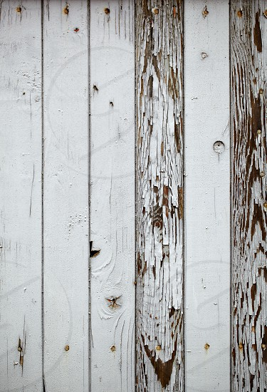Macro shot of the gray wooden wall vintage background. Vertical shot. photo
