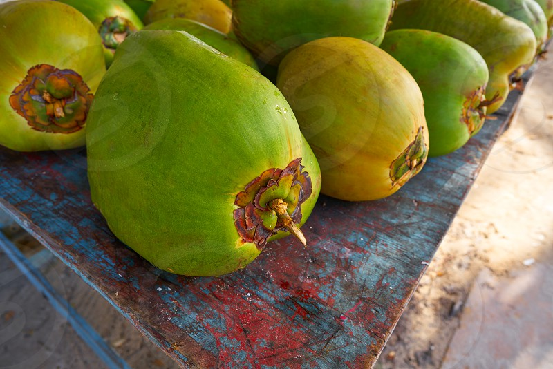 caribbean coconut fruits in Mayan Riviera of Mexico photo
