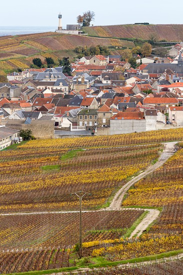 Cellars houses and hillsides of Champagne has been officially listed in the Unesco world heritage sites since June 2015...  Here is a view of the Champagne vineyards in autumn/fall but to see landscapes like this you might need to hire a car from your favourite car rental company from Reims Epernay or elsewhere. photo
