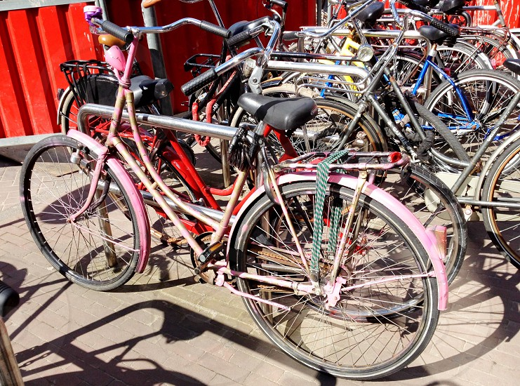 bicycles parked near red gate photo
