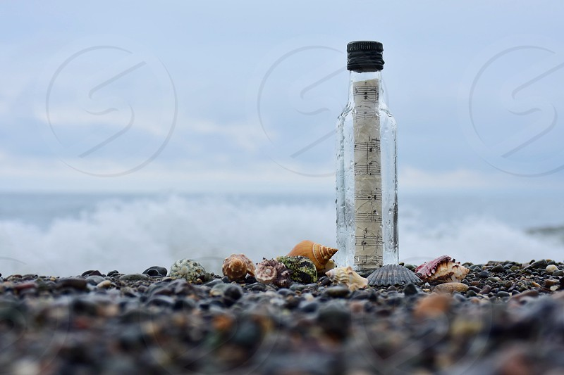 shallow focus photography messaging bottle with white paper in beach shore during daytime photo