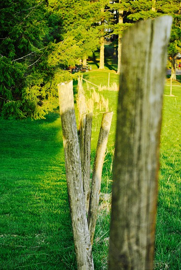 brown wooden fence during daytime photo