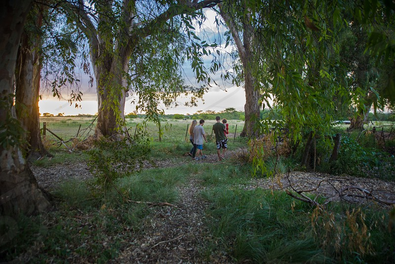 vibrating summer portrait of family walking with kid in arms through trees in a farm at sunset time photo
