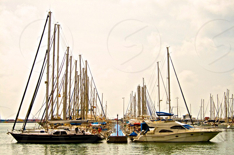 Yachts moored at the Marina in Alicante.  photo