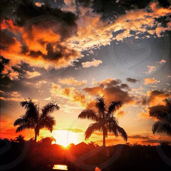 Tropical skies  #sunsets #nature #beautiful  photo