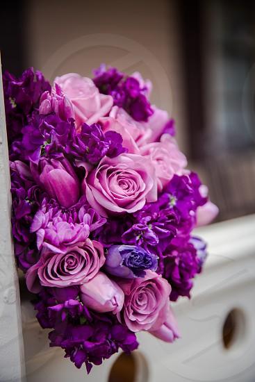purple bouquet photo
