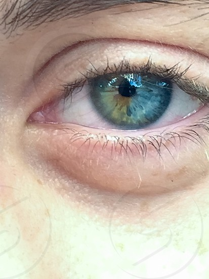 Unusual half brown half blue eye with reflections of trees & caravan in the eye. photo