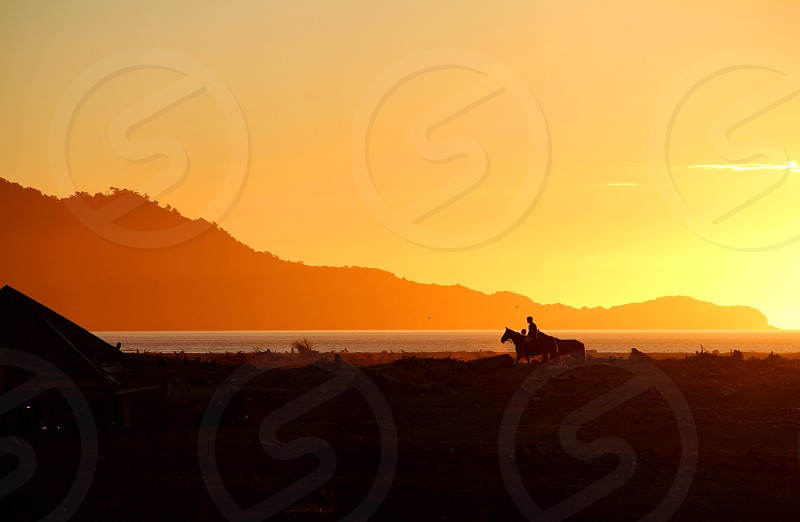 A horse and rider at sunset along the Gulf of Corcovado in Chaiten Chile. photo