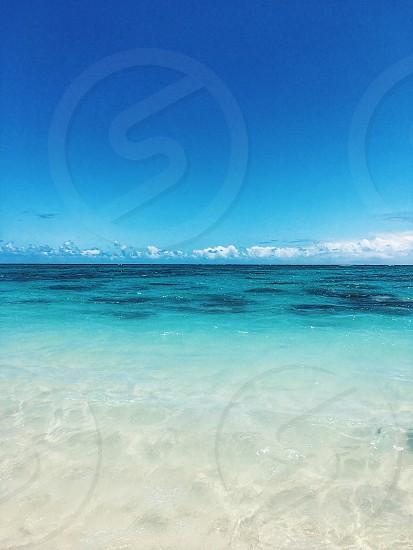 Hawaii daze photo
