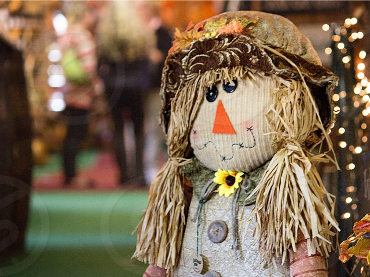 scarecrow with bokeh in background photo