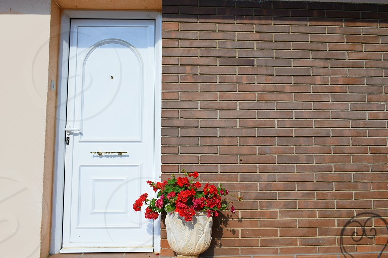 deco home door house plant White Brown aluminum bricks flowerpot red geranium photo