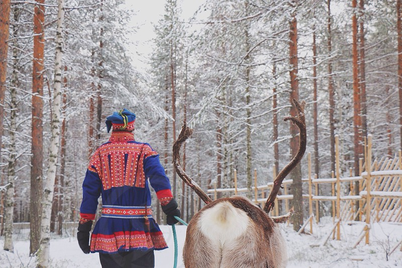 man wearing red and blue suit and hat beside gray moose on snow covered field photo