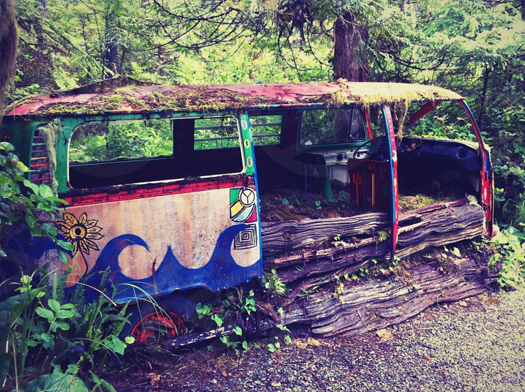 "Overgrown VW ""Hippy"" bus in the forest.  British Columbia Canada. photo"