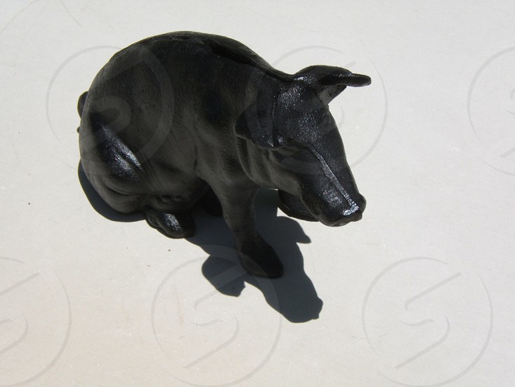Cast iron pig piggybank with light and shadow. Bank black hog coins metal vintage antique photo