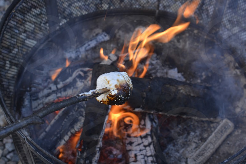 half burnt marshmallow on stick over the fire pit photo