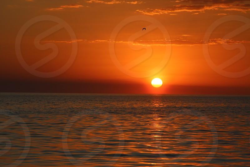 sunset beach ocean sky sun bright yellow orange photo