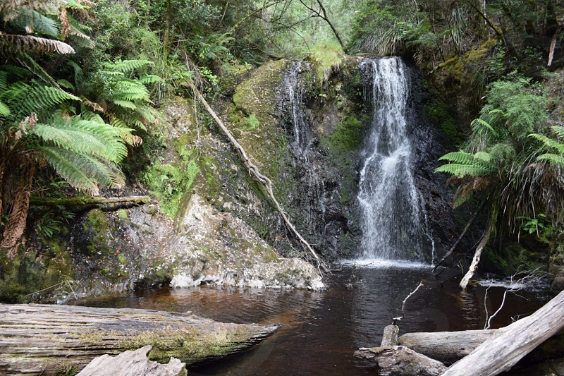 Waterfall Tasmania Australia photo