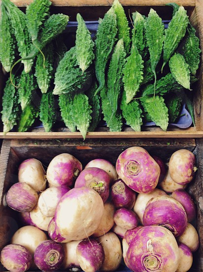 purple sweet potato  photo