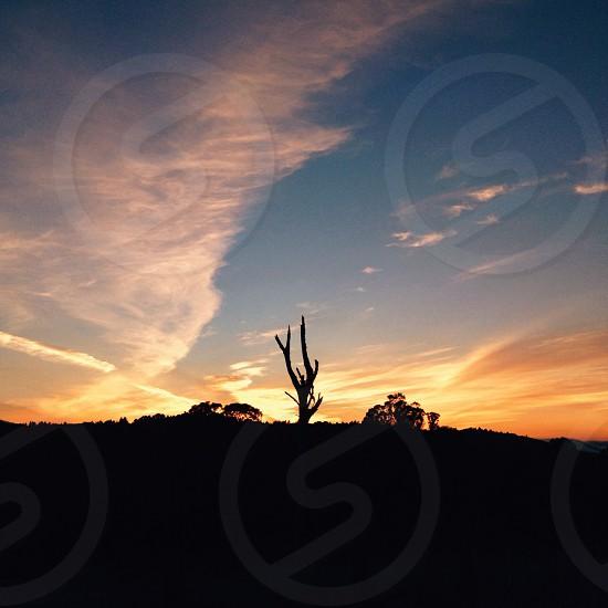 Santa Cruz sunsets photo