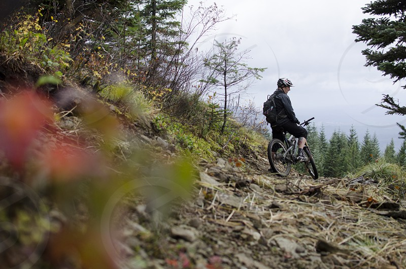 Taking a break and taking in the view on Larch Mountain in SW Washington. photo