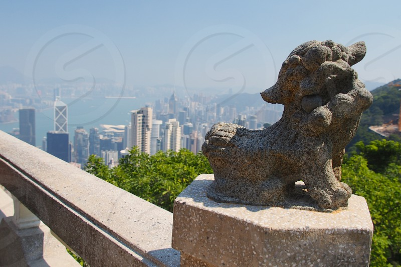 Hong Kong. Dragon statue. Buildings.  photo