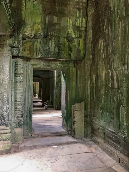 Outdoor day vertical portrait colour Ta Prohm Temple Angkor Cambodia Asia Asian East Eastern Holy religious spiritualTombraider Lara Croft movie set Hollywood travel travelling traveller wanderlust tourism tourist stone carved ornate ruin ancient rocks hidden green photo