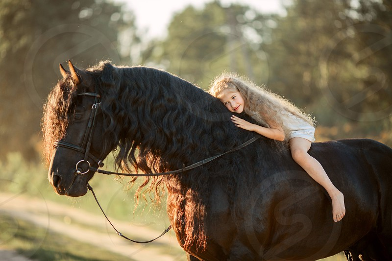 Little ballerina girl with black fresian stallion  photo