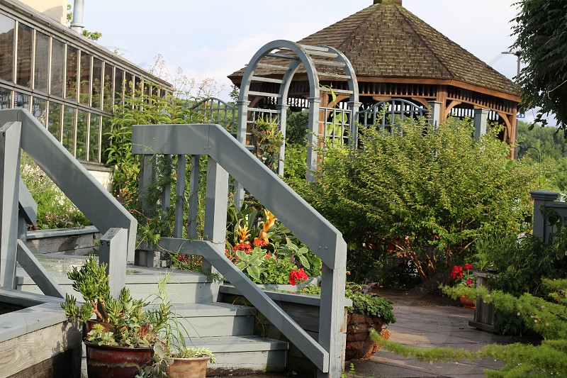 gazebo surrounded by plants below bright sky during daytime photo