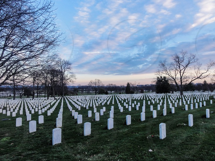 Arlington National Cemetery - Arlington Washington DC USA photo