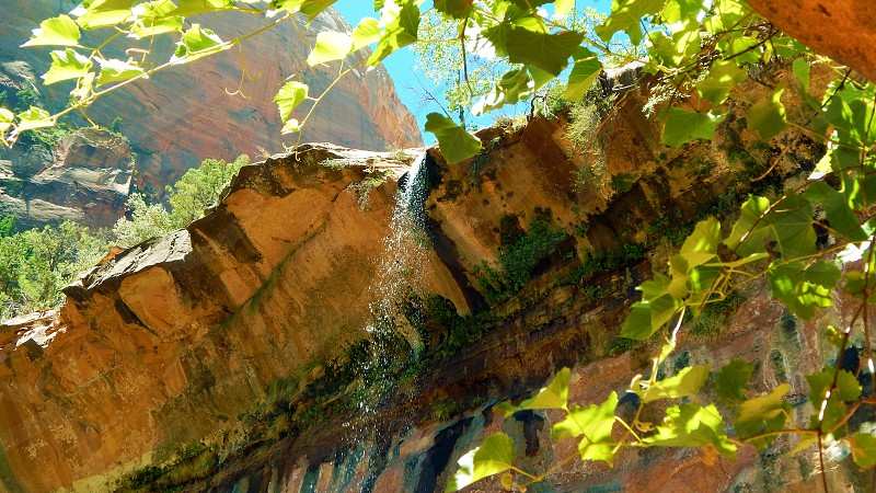 Emerald Pools Waterfall at Zion National Park in Utah photo