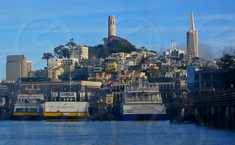 A postcard from San Francisco looking at the Coit Tower. photo