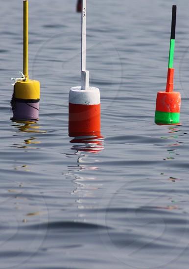white and orange buoy photo