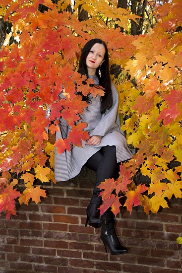 woman in grey long sleeve coat seating on red brick wall surrounded by orange and yellow maple leaf plants photo