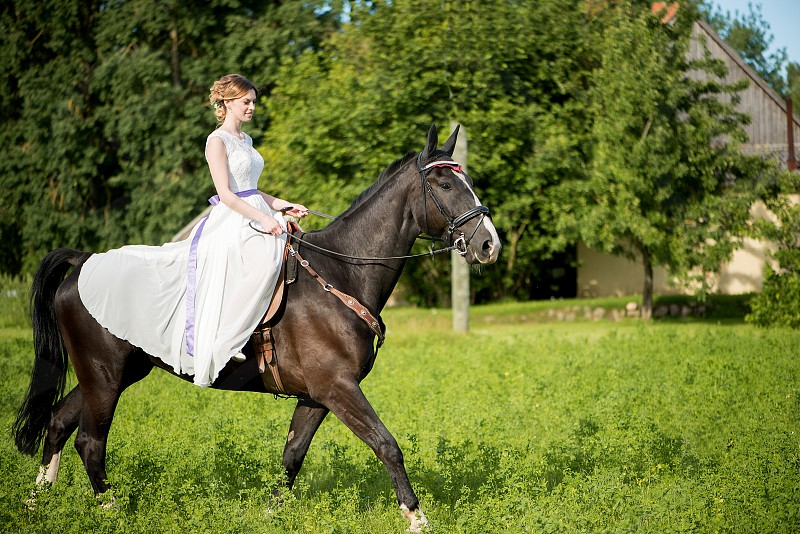 Beautiful bridewhite  wedding dressbridal bouquetbrown horse  photo