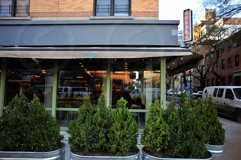 awning over a glass window restaurant corner building with green trees in galvanized planters photo