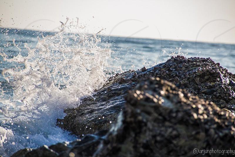 The Splash photo