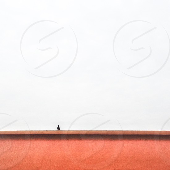 Silhouette of a person on the red dirt photo