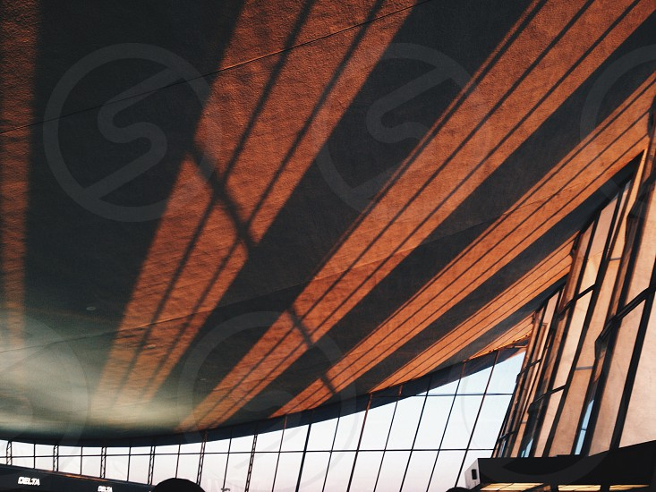 black and orange striped canvas photo