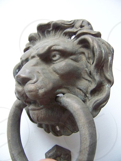 Lions head door knocker brass lions head brass ring photo