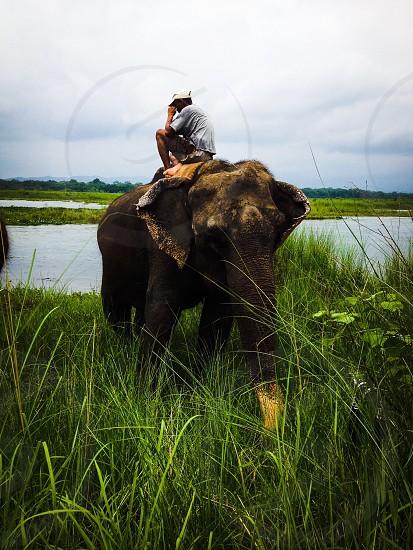 Chitwan Nepal  photo
