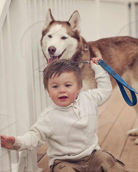 toddler holding a dog by a leash photo