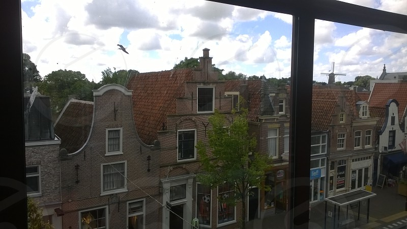 Holland Netherlands Alkmaar Windmill Bird Buildings Rooftops Windows Sky Clouds Europe photo