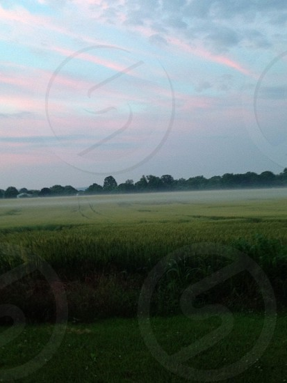 Early morning fields photo