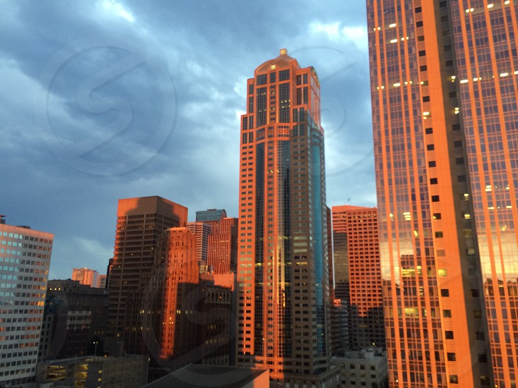 View from vacation rental in downtown Seattle city dusk travel tourism activities  photo