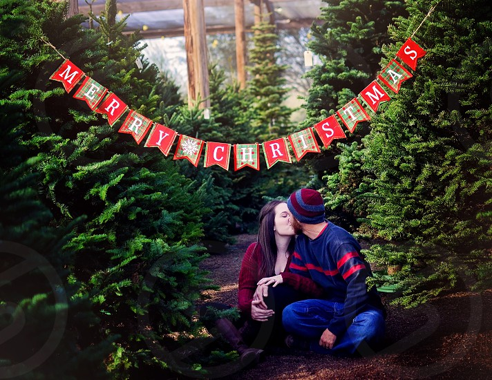 """Couple kissing in a tree lot under a """"Merry Christmas"""" sign photo"""