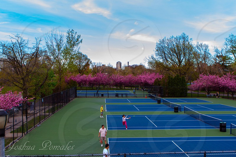Tennis courts in Flushing Meadows Park. photo