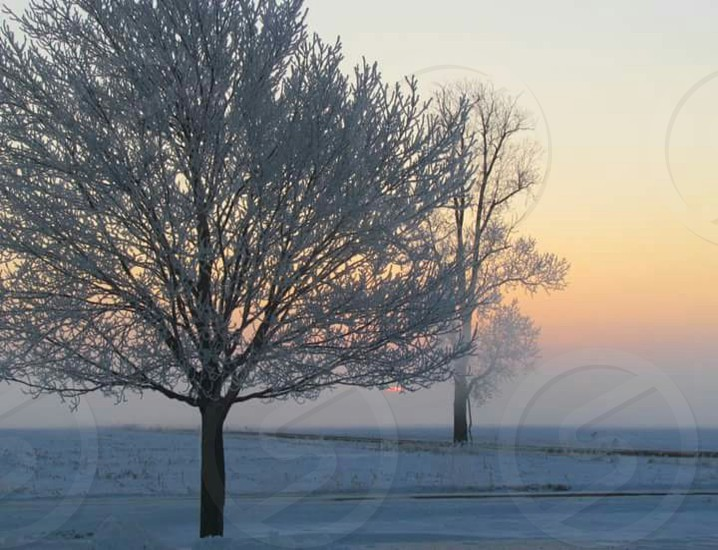 winter cold ice snow photo