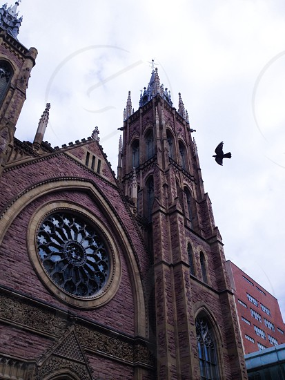 low-angle photo of a red brick cathedral with black bird flying nearby under gray clouds photo